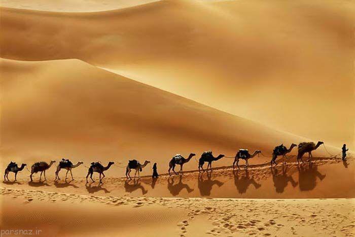 مجموعه تصاویری از زیباترین بیابان ها در این کره خاکی