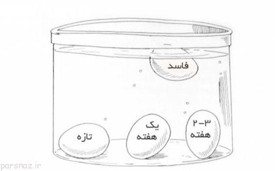 خانم های کدبانوی ایرانی چه چیزهایی باید بدانند؟