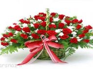 عکس های زیبا از سبد های گل جذاب