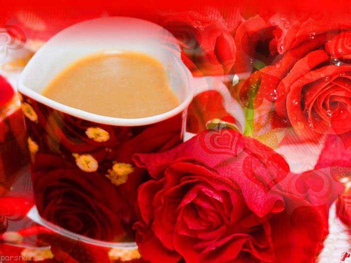 عکس های دیدنی و عاشقانه از گل های رز