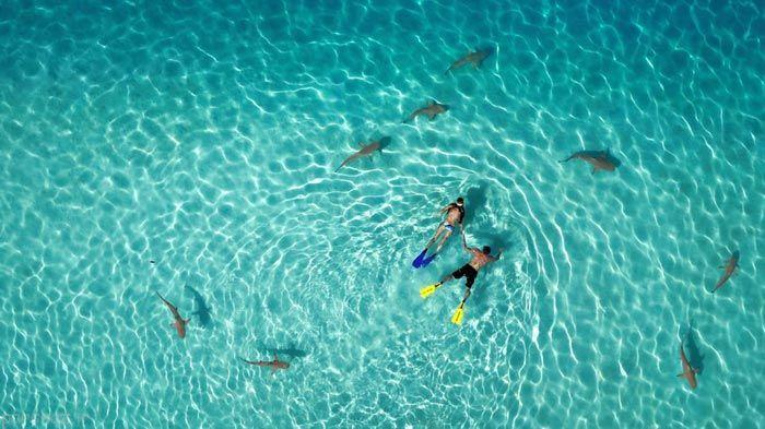 عکس های حیرت آور گرفته شده توسط پهپاد ها