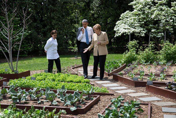 تصاویری جالب و نزدیک از اوباما رئیس جمهور آمریکا