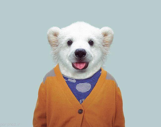 تصاویر پرتره جالب از حیوانات در لباس انسان