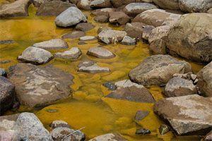 تصاویری از رودخانه ی طلایی زیبا و جذاب