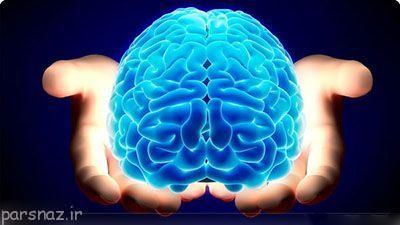 10 حقیقت جالب درمورد مغز انسان