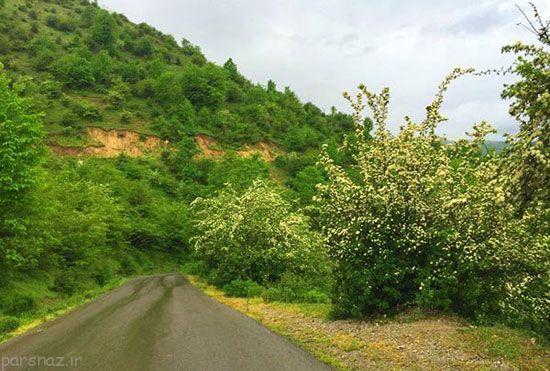 سرزمین بهشتی فوق العاده در نزدیکی تهران بزرگ