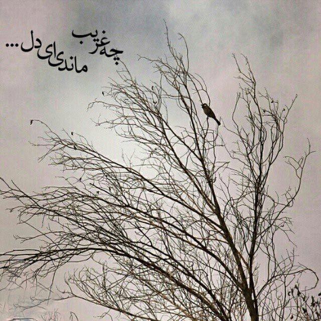 دل نوشته های زیبا و عاشقانه از بزرگان