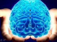 معرفی دمنوش برای تقویت حافظه شما