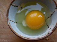 حقیقت جالب از زرده تخم مرغ