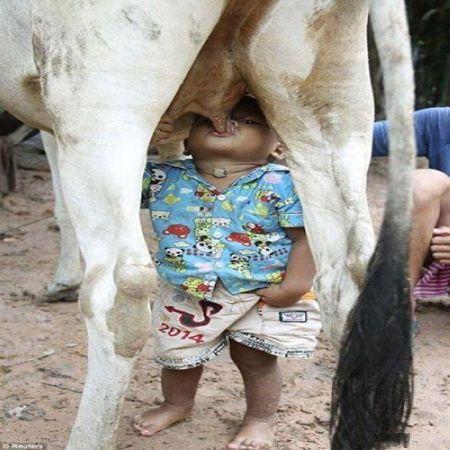 عکس های خنده دار و جالب از سوژه های جهانی