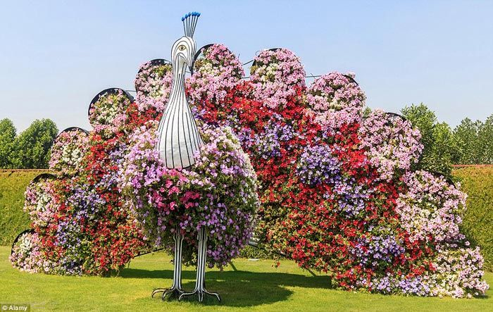 عکس های زیبا از بزرگترین باغ گل دنیا در دبی