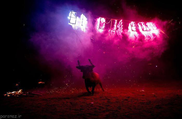 اعتراض نسبت به جشنواره سنتی گاو آتش در اسپانیا