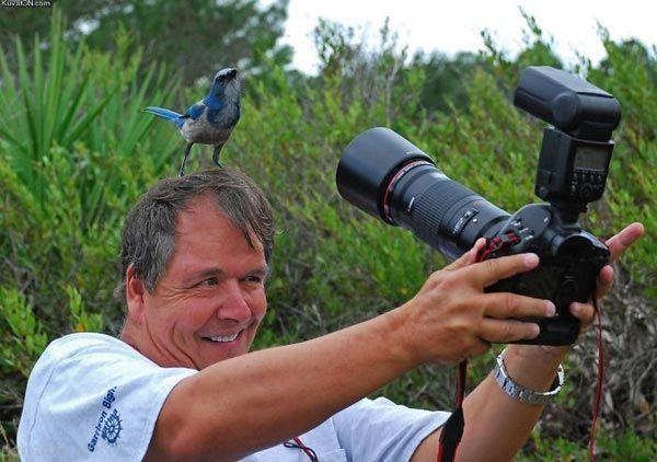 تصاویر عکاسان در حال عکس برداری را ببینید