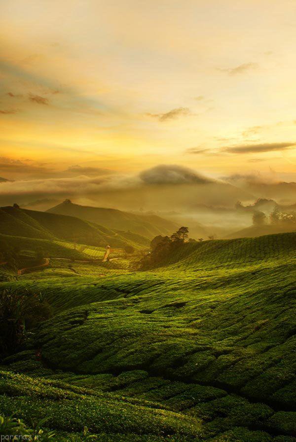 مناظر زیبا و چشم نواز زمین را ببینیم