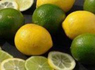 آلوده بودن لیموترش های وارداتی به ایران