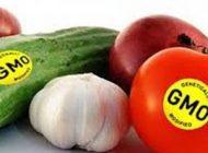 همه چیز درباره محصولات دستکاری شده ژنتیکی
