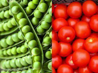 پرورش گوجه فرنگی و نخود فرنگی در باغچه منزل