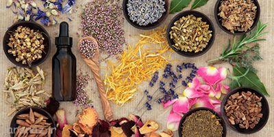 بهبود درد سیاتیک با این گیاهان دارویی
