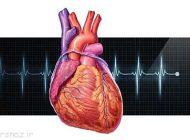 تپش های نامنظم یک قلب