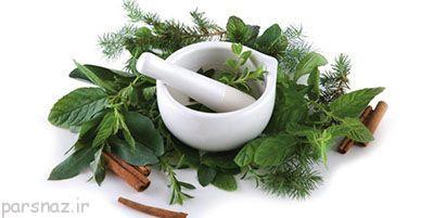 این گیاهان برای مو بسیار مفید هستند