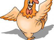 شعر طنز در خصوص گرانی مرغ
