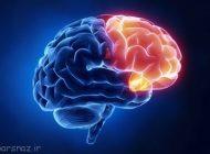 راهی برای ورود به مغز برای پزشکان