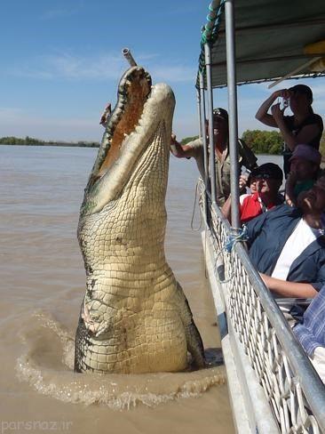 جاذبه های گردشگری ترسناک استرالیا