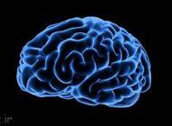 این عادات برای مغز شما مضر هستند