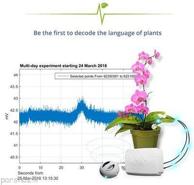 از این به بعد میتوانید به درد و دل گیاهان گوش دهید