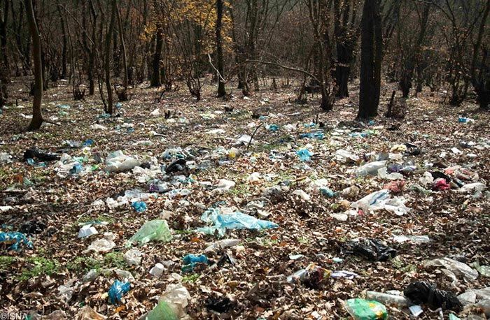 زباله و آلودگی گسترده در جنگل های شمال