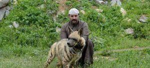 دختر سعودی و بازی با حیوانات خطرناک