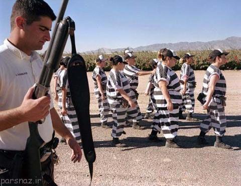 تصاویر زنان زندانی در کشور آمریکا