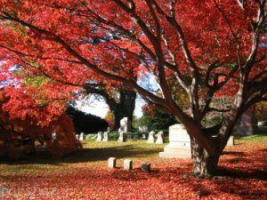 گرانترین و لوکس ترین قبرهای جهان را ببینید