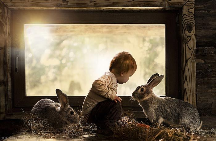 زیباترین عکس ها از دوستی کودکان و حیوانات