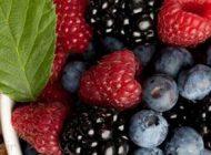 با این خوراکی ها به جنگ سرطان برویم