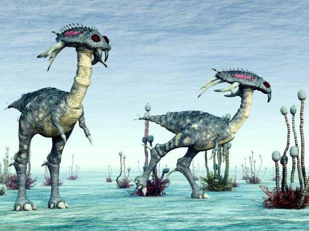 مقایسه ظاهر موجودات فضایی با انسان ها