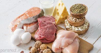 پروتئین گیاهی و حیوانی چه تفاوت هایی با هم دارند؟
