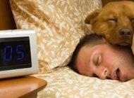 گجت های الکترونیکی مخصوص خواب راحت