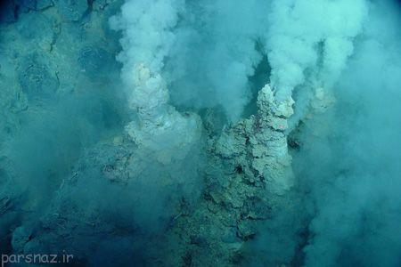 منشاء همه موجوادات زنده زمین را ببینید