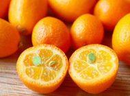 این میوه دوست دستگاه گوارش و قلب است