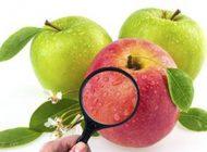 وزیر بهداشت سیب را با پوست نخورید