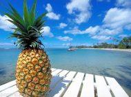 خواص مفید آناناس بمب ویتامین در بدن