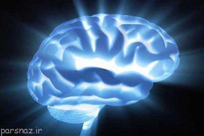 ماده خاکستری مغز و خصوصیات آقایان