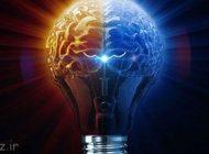 بهره وری مغز در چه وقت هایی حداکثر است؟
