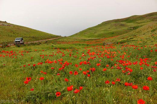 سفر به بهشت سوباتان در گیلان