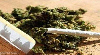 افزایش مصرف ماده مخدر گل بین جوانان