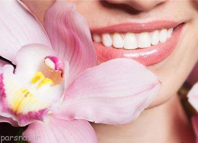 مواد غذایی مفید برای دندان و لثه