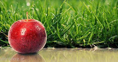 درباره سیب درمانی چه می دانید؟