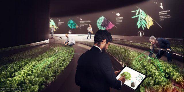 مواد غذایی که بصورت دیجیتال پرورش داده می شوند
