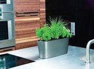 باغچه های دیدنی برای زیبایی خانه شما